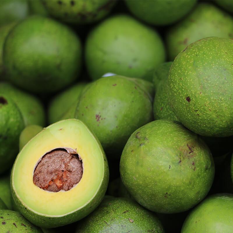 Friske avocadoer i Grønkål Detox Smoothie