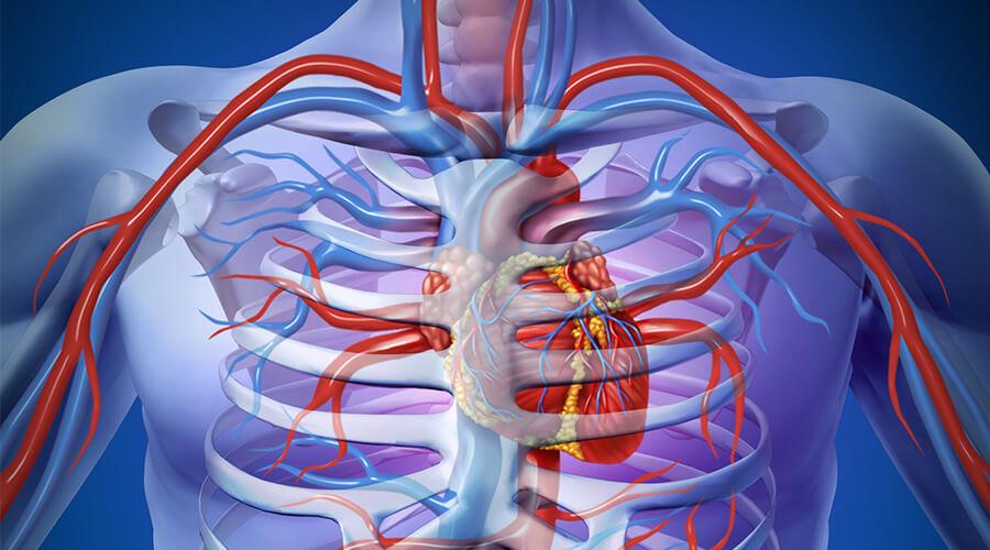 Omega-3 er godt for hjerte sundhed