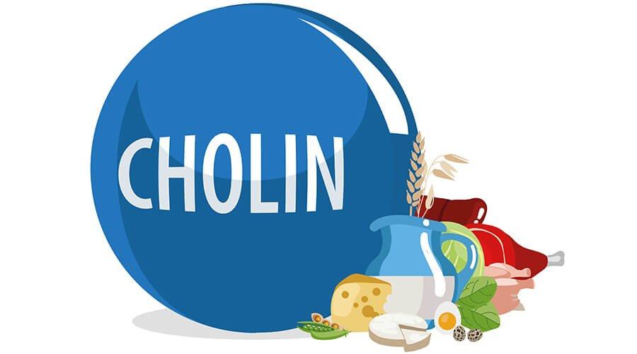 Hvad er Cholin?